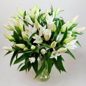 19 lilii