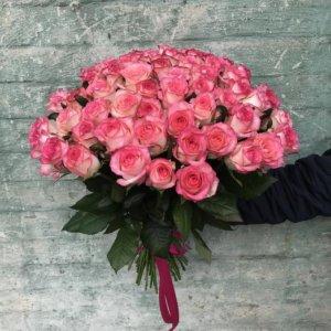 45 rozov roz