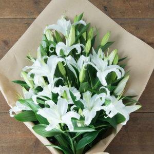 5 lilii