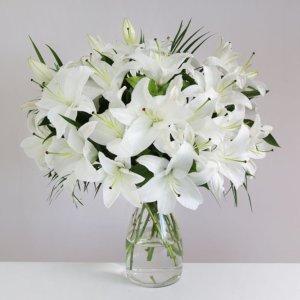 15 lilii