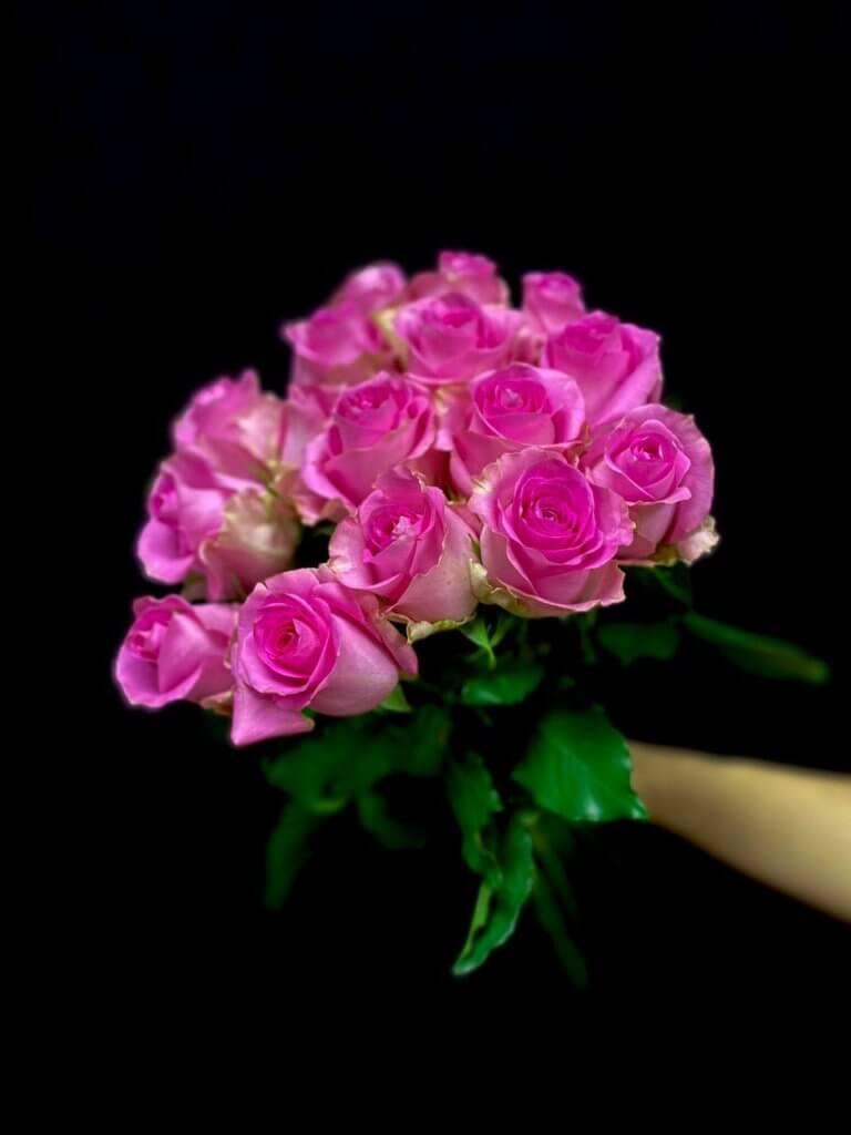 Розовые розы 50 см (Кения)