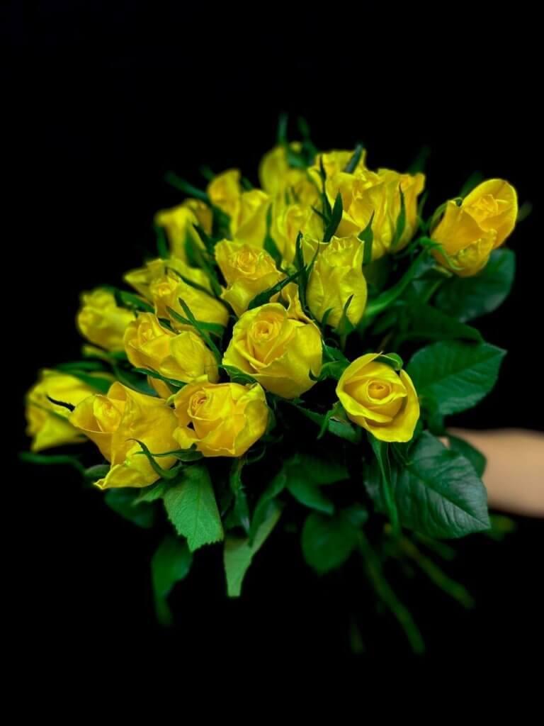 Желтые розы 50 см (Кения)