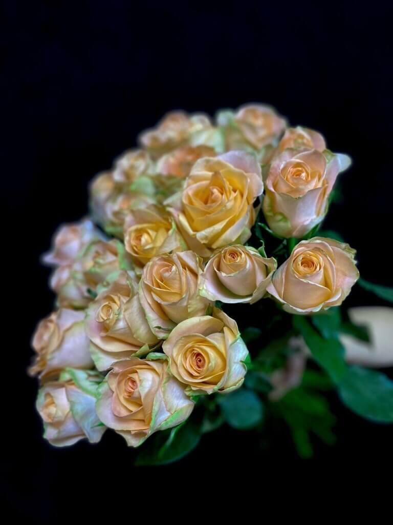 Персиковые розы 50 см (Кения)