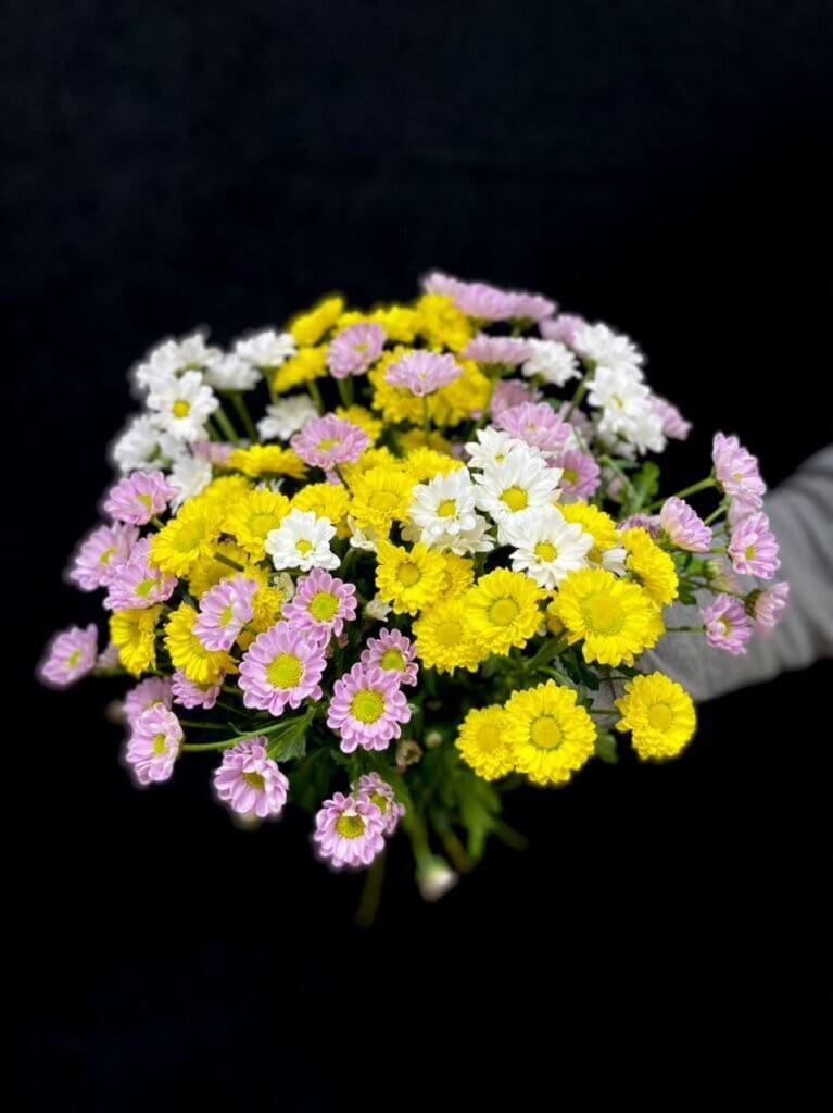 Хризантемы микс (сантини 55 см)