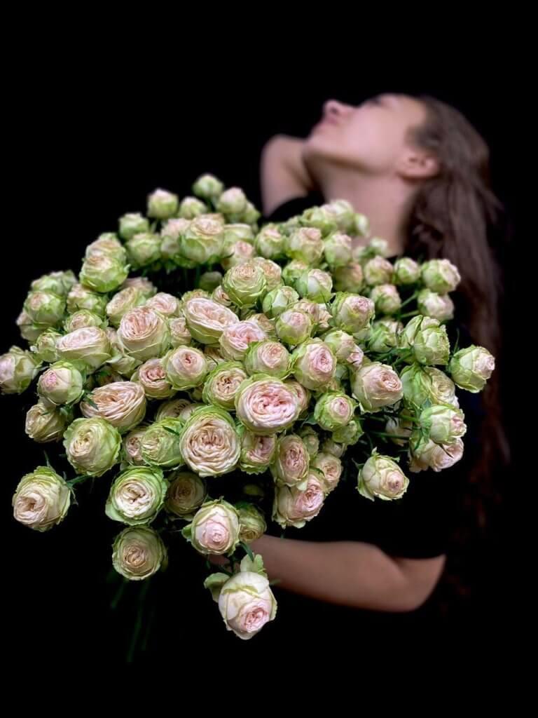 Кустовые розы Galina